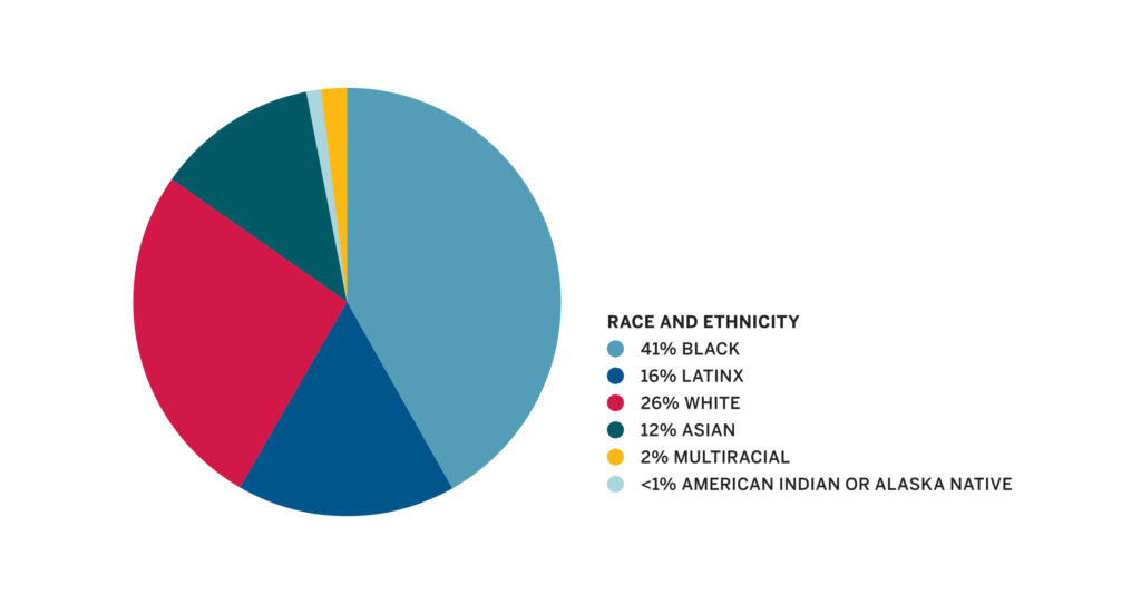 Race and ethnicity statistics pie chart