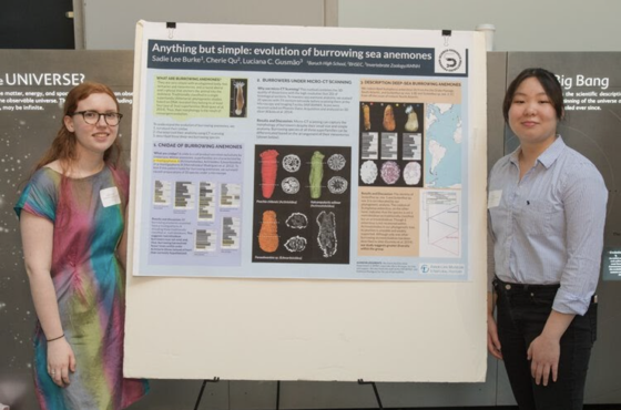 Two students research project